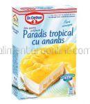 Mix Pentru Paradis Tropical cu Ananas Dr. OETKER 287g