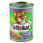 Mancare Umeda pt. Pisici KITEKAT Peste in Sos 400g