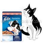 Mancare Umeda pentru Pisici FELIX Somon in Aspic Plic 100g